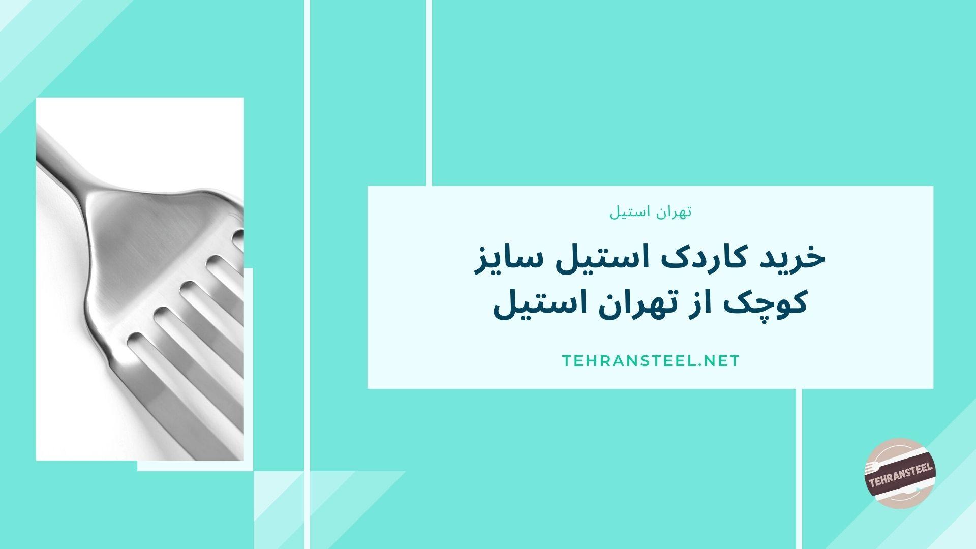 خرید کاردک استیل سایز کوچک از تهران استیل